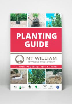 Mt William Planting Guide A5 mockup